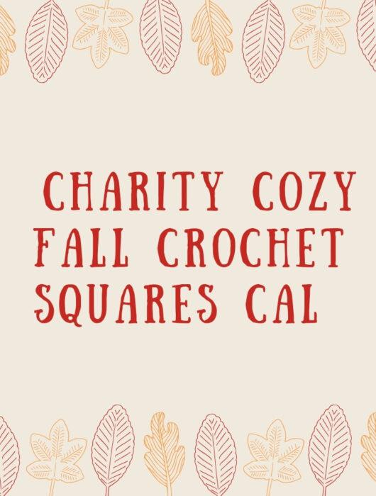 charity cozy fall crochet a long
